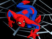 Spiderman Web besed